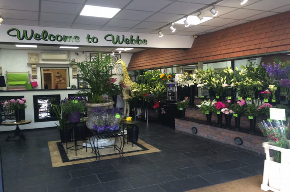 LED lighting in a florist saving 75 per cent om running costs